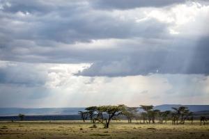 Masai Mara_9